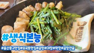 [울산맛집] 생식본능 - 막창, 곱창 전골 맛집