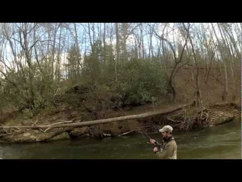 Rock creek doovi for Fly fishing blue ridge ga