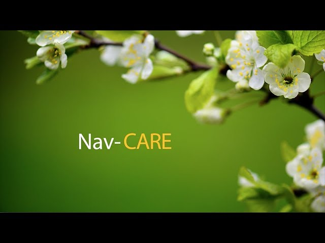 Celebrating Hospice Programs: NavCARE