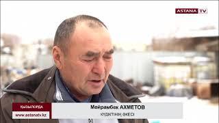 Бас дәрігер Елжан Біртанов орманшы Ерлан Нұрғалиевтің өліміне қатысты пікір білдірді