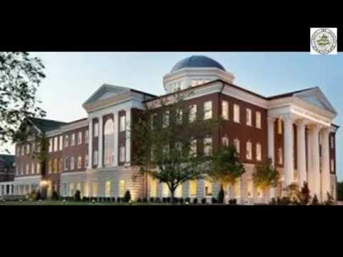 19 liberty university online