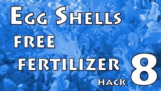 Vegetable Garden Hack #08 - Egg Shells are Free!