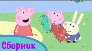 Свинка Пеппа сборник 14