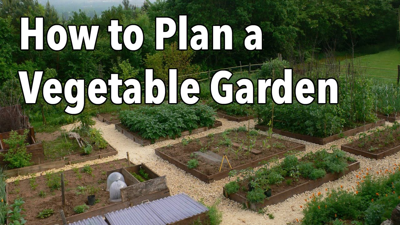 how to plan a vegetable garden design your best garden layout youtube. Black Bedroom Furniture Sets. Home Design Ideas