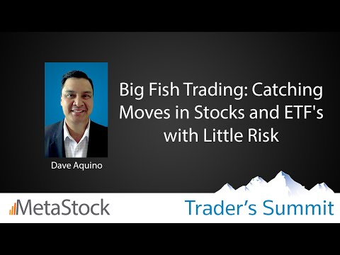 Big Fish Trading: Catching Moves in Stocks & ETF's with Litt