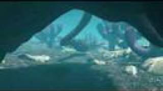 Cambrian Sea 〜カンブリア紀の海〜
