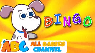 Bingo Song | Nursery Rhymes | Songs For Children by All Babies Channel