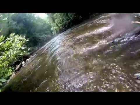 Fly Fishing Coopers Creek Ga