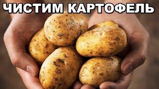 Как БЫСТРО почистить молодой картофель? Советы и лайфхаки для дома. ПОЛЕЗНЫЕ СОВЕТЫ MIX