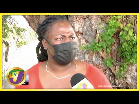 'A Nuh Chicken Feed'   TVJ News - July 30 2021