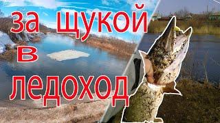Рыбалка на спиннинг Очень раннее открытие сезона
