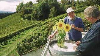 S S Südsteiermark Weingut Tement