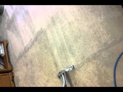 Carpet Cleaning Little River Sc 29566 Carpet Cleaning North
