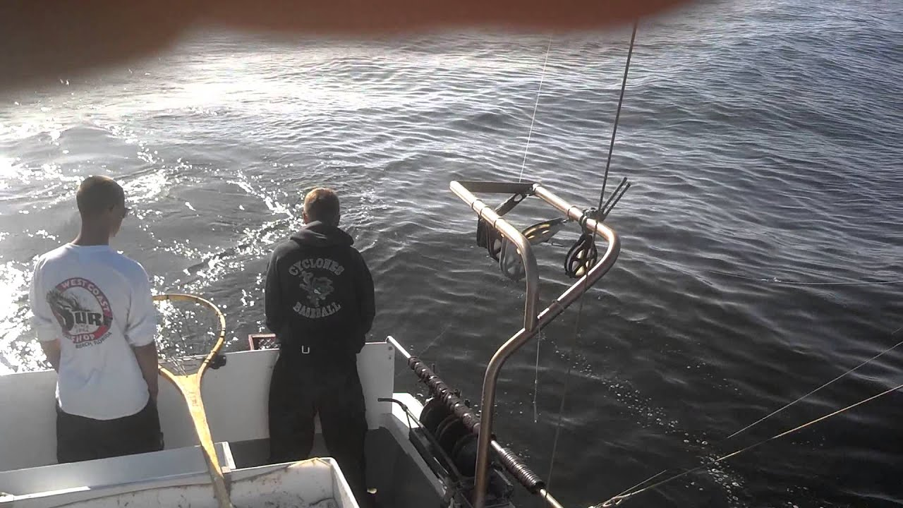 Commercial salmon fishing california 2013 youtube for What is commercial fishing