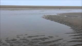 모래의 미소 바다의 오아시스 '풀등'에 …