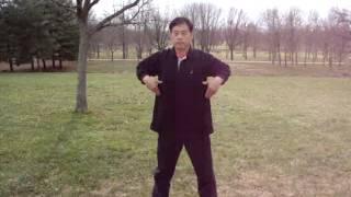 Ba Duan Jin Movement Demo by Grand Master Mingye Ding