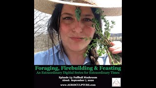 "Episode 73: Puffball Mushroom__""Foraging Firebuilding & Feasting"" Film Series by Agrisculpture"
