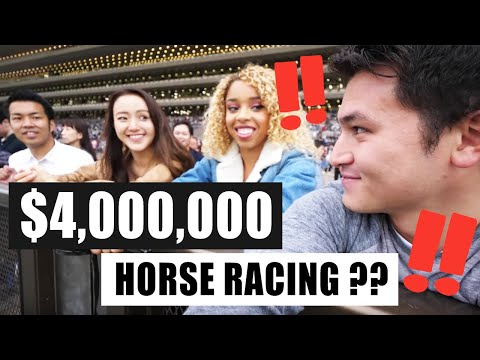 Why Is Horse Racing In Japan So Popular?