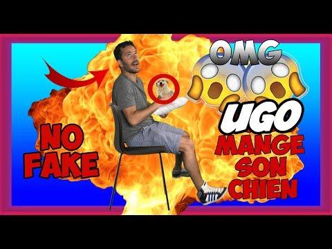 UGO DE LOLYWOOD MANGE SON CHIEN ?! - MDR 88