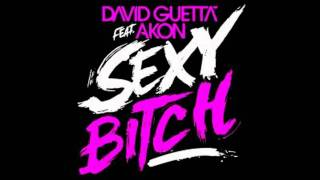 David Guetta Feat. Akon - Sexy Bitch (Audio)