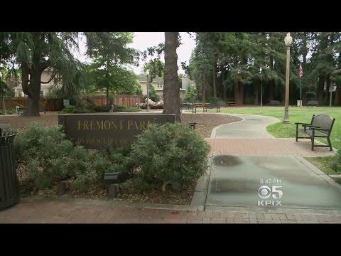 Menlo Park's Parks Go Pesticide-Free