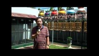 TIPS AND TRICK PENANGKARAN BURUNG PERKUTUT KICAU NGALAM JTV