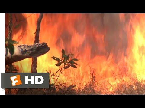 Crocodile Dundee II (1988) - Bushfire Showdown Scene (9/10) | Movieclips