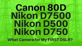 Canon 80d Vs Nikon D7500 Vs Nikon D500 Vs Nikon D750 - What Camera To Choose?