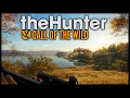 The Hunter: Call Of The Wild - MOOSE HUNTING _ Black Bear Hunting!