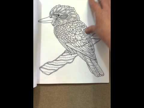 Birds A Mindful Coloring Book Flip Through