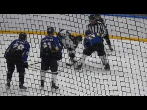 Preliminary round: Espoo Blues vs.Rosenheim Star Bulls 2/3