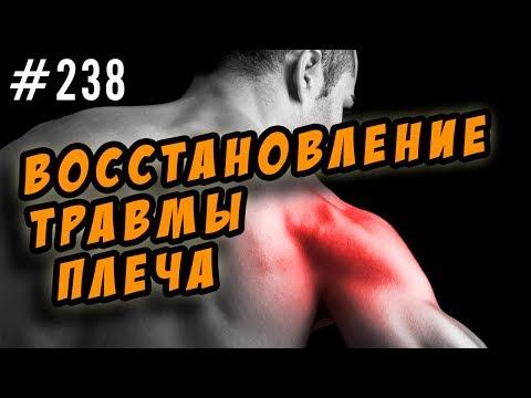 Плечо (часть тела) — Википедия