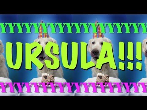 happy-birthday-ursula!---epic-happy-birthday-song
