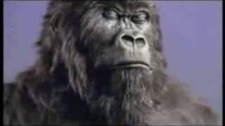 cadburys drumming ape remix warp brothers