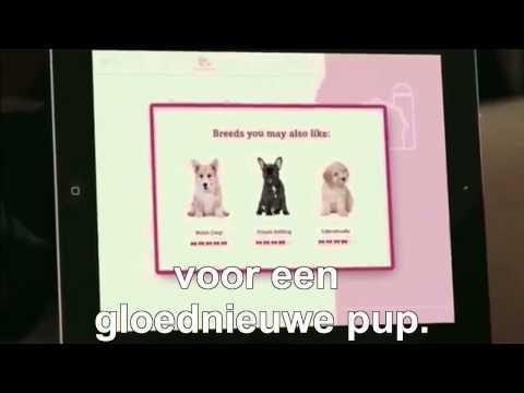 PuppyRuil
