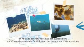 eFOCE (French)