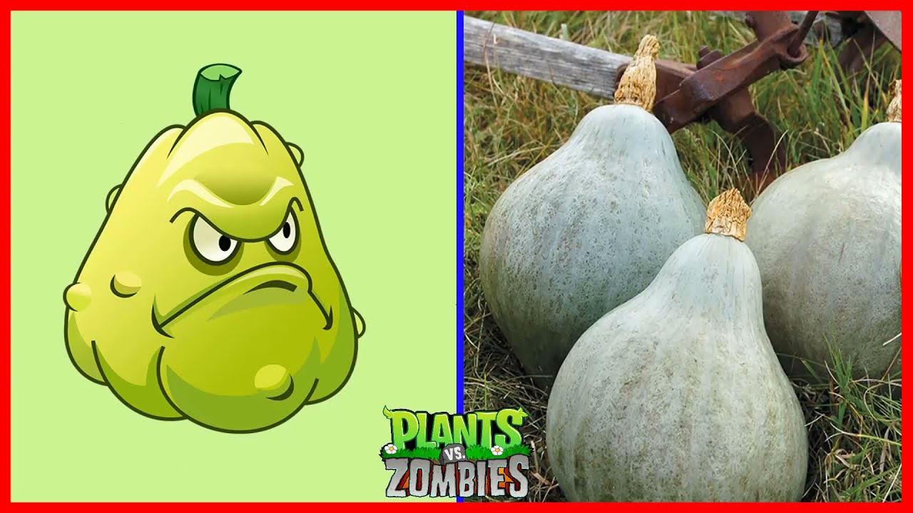 Game and Real Life Difference - Plants vs Zombies #1