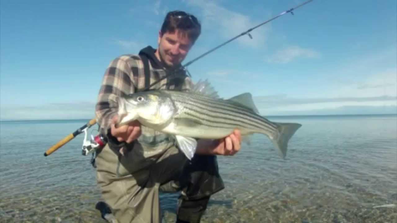 fishing on cape cod