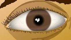 tutoriale video la examinarea ochilor