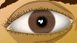 Animated eye exercises to improve your vision
