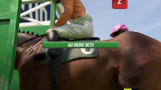 Portman park horse racing betting guide four fold horse racing betting
