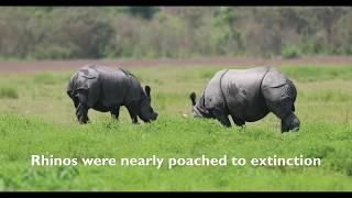 Rhino Lookout: A Schoolchild's Oath