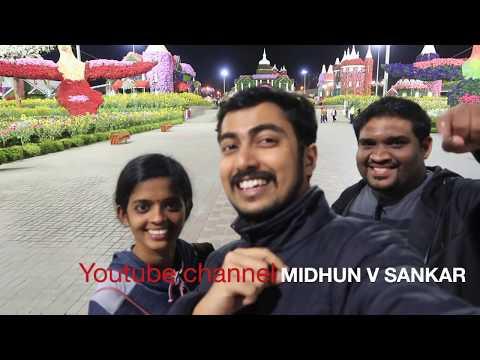MIRACLE GARDEN DUBAI FULL VIEW | മിറക്കിൾ ഗാർഡൻ ദുബായ് | Malalayam vlog |