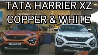 Tata Harrier Calisto Copper Vs Orcus White color comparison