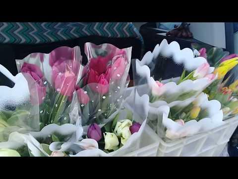 Тюльпаны на 8 марта. Продажа с машины. Отчет о торговле.