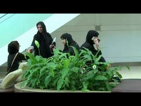 Working Emirati women to get 'gender balance' council