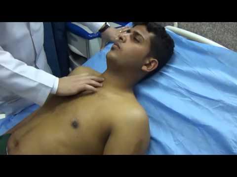 Respiratory System - Palpation