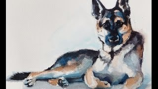 Watercolor Demo By Christine Karron German Shepherd Puppy (speed Painting)