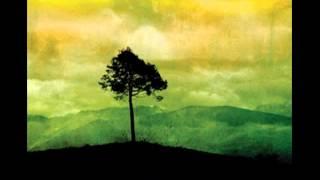 Storm Of Capricorn -- Cawatana - Unsere Richtung