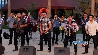 """Banda Renovacion - La Pachuca """"Instrumental"""" (En Vivo 2019)"""